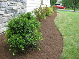 lawn care raleigh mulchbed